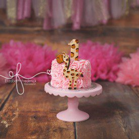 Giraffe Pink & Brown Smash Cake Photography Session First Birthday Session, CT Smash Cake Photographer, CT First Birthday Photographer Elizabeth Frederick Photography www.elizabethfrederickphotography.com