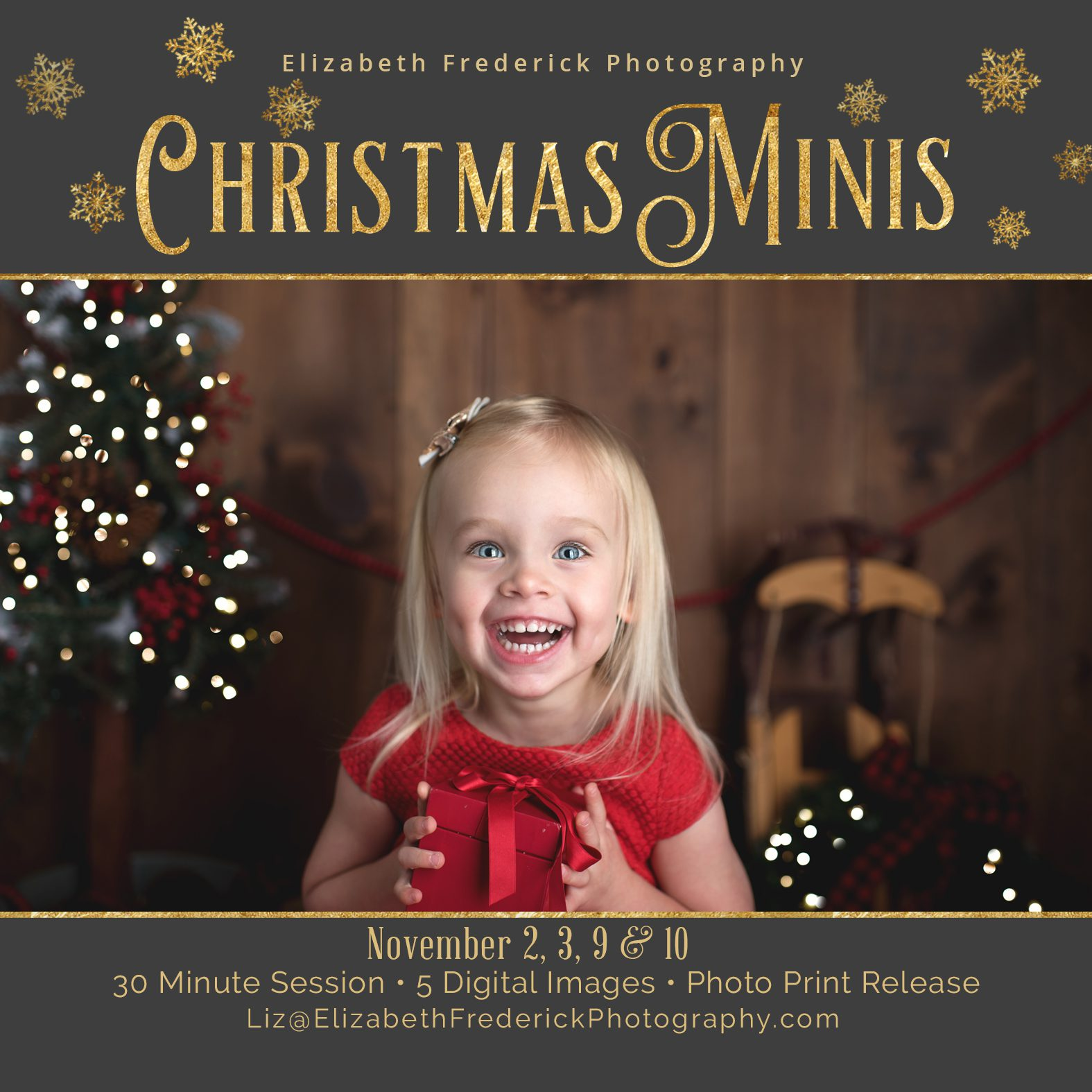 2018 Holiday Mini Sessions | CT Mini Session Photographer | Holiday Photos | Christmas Mini Sessions | CT Christmas Mini Session Photographer
